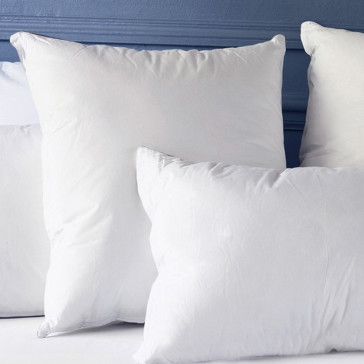 The Hypo-Allergenic Pillow